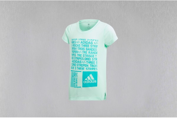 adidas Performance TRAINING GRAPHIC TEE DJ1093 Τιρκουάζ